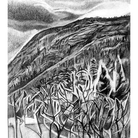 Mountain Side   |   charcoal, 10x8in, 1998