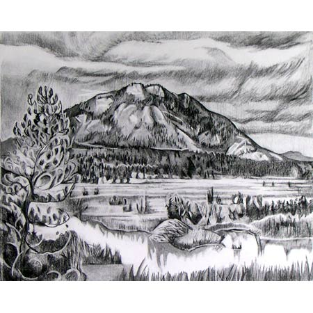 Beaver Housen   |   charcoal/paper, 18x24in, 1993
