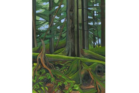 Rainforest       |       Oil/Canvas, 14x11in, 2014